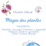 infusion bleue-1 AVEC INGREDIENT