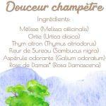 douceur champêtre tisane bio